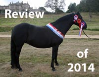 Review of 2014